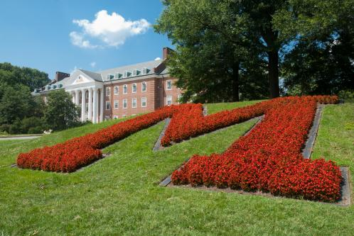 University of maryland college park admission essay questions